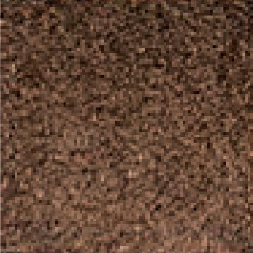 שטיח כניסה חום