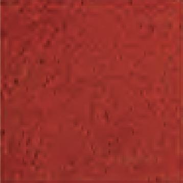 שטיח כניסה אדום
